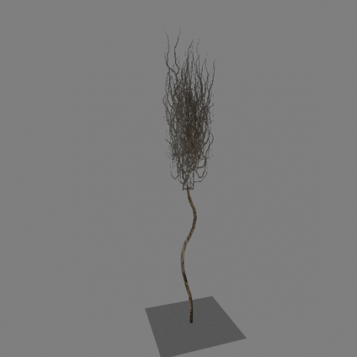 l10_swamp_kamysh_tree2
