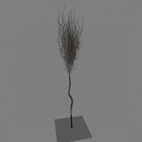 l10_swamp_kamysh_tree3
