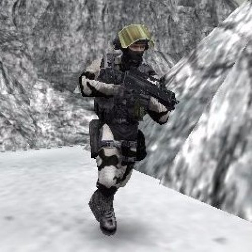 Winter Camo Counter-Terrorists