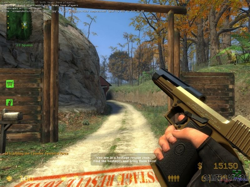 LE2 Toned Golden Hav0c Deagle