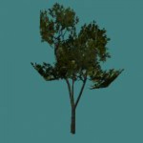 forge_tree3.mdl