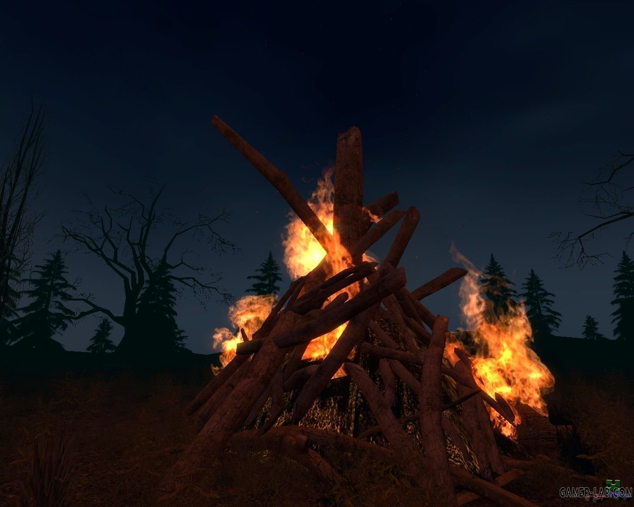 dod_bonfire_night_b1