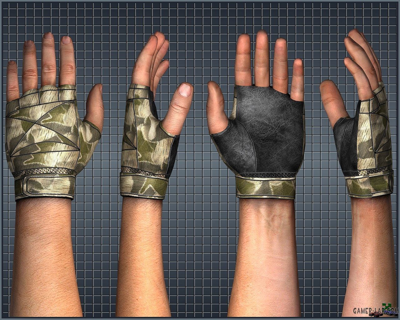 Teh_Maestro_s_New_Gloves