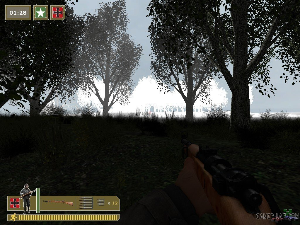 dod_forest