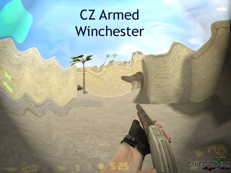 cz armed winchester