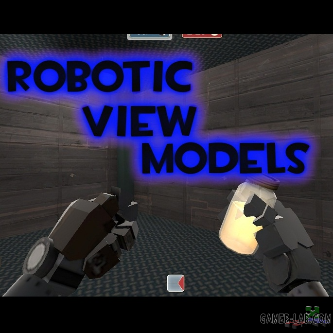 Robotic View Models