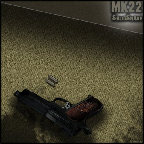 Custom_Mk22_for_the_USP