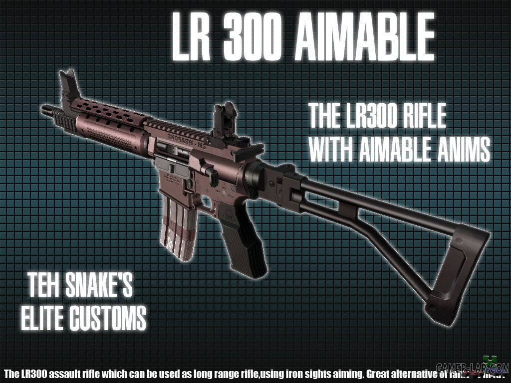 LR-300 Aimable