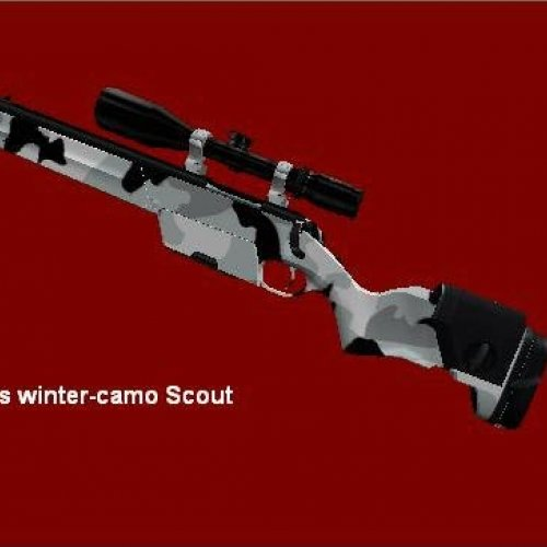Takeshi s winter-camo scout
