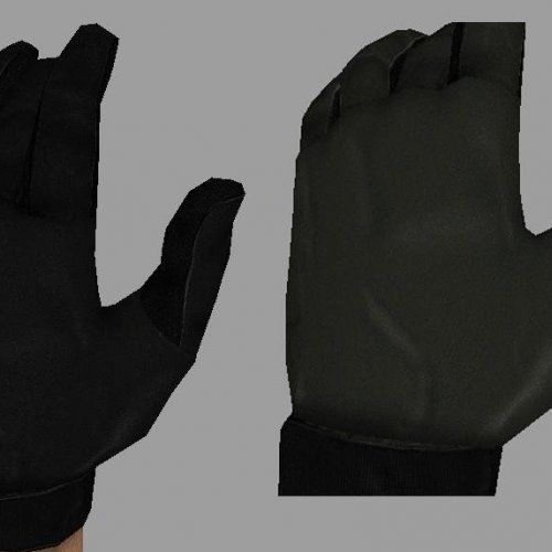 Werd_s_Gloves