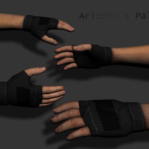 Arizona_s_Palm