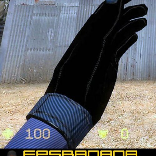 NSW_Police_Gloves