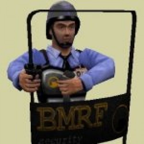BMRF Shield Security