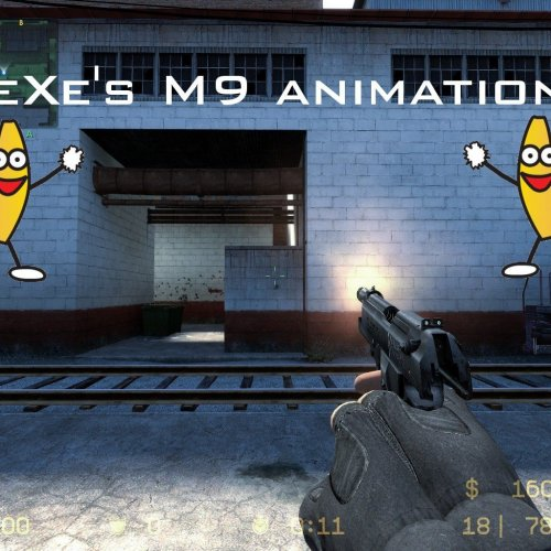 .eXe's Cod4 MW2 M9 Animations