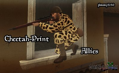 Cheetah_Print_Allies