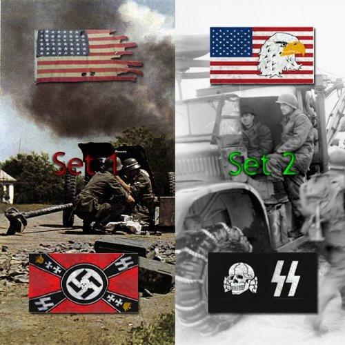 DoD_S_Flags_(torn)