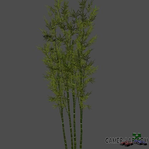 AA_Bamboo_XL_Cluster_01_JS_SMesh