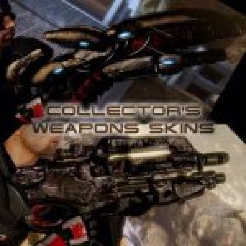 Collector's Weapons Skin