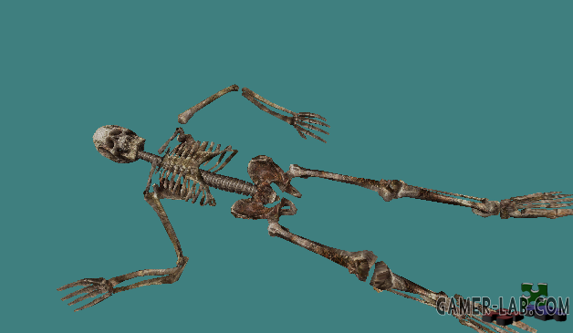 HD Skeleton