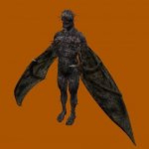 RE4 Regenerator with wings