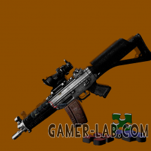 Private_Collection-SG552_New_Classicw.png