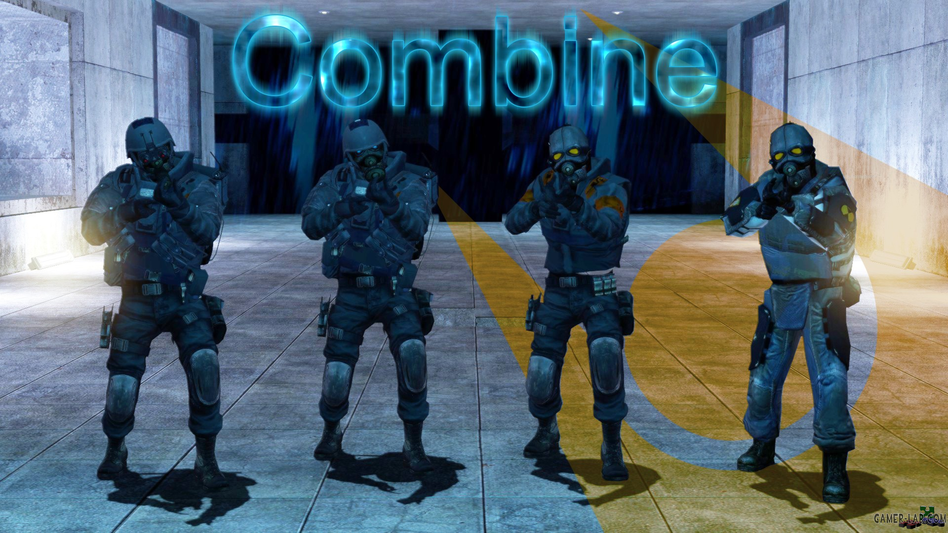HL2 & Heavy Combine Pack