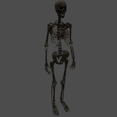 fnv_skeleton