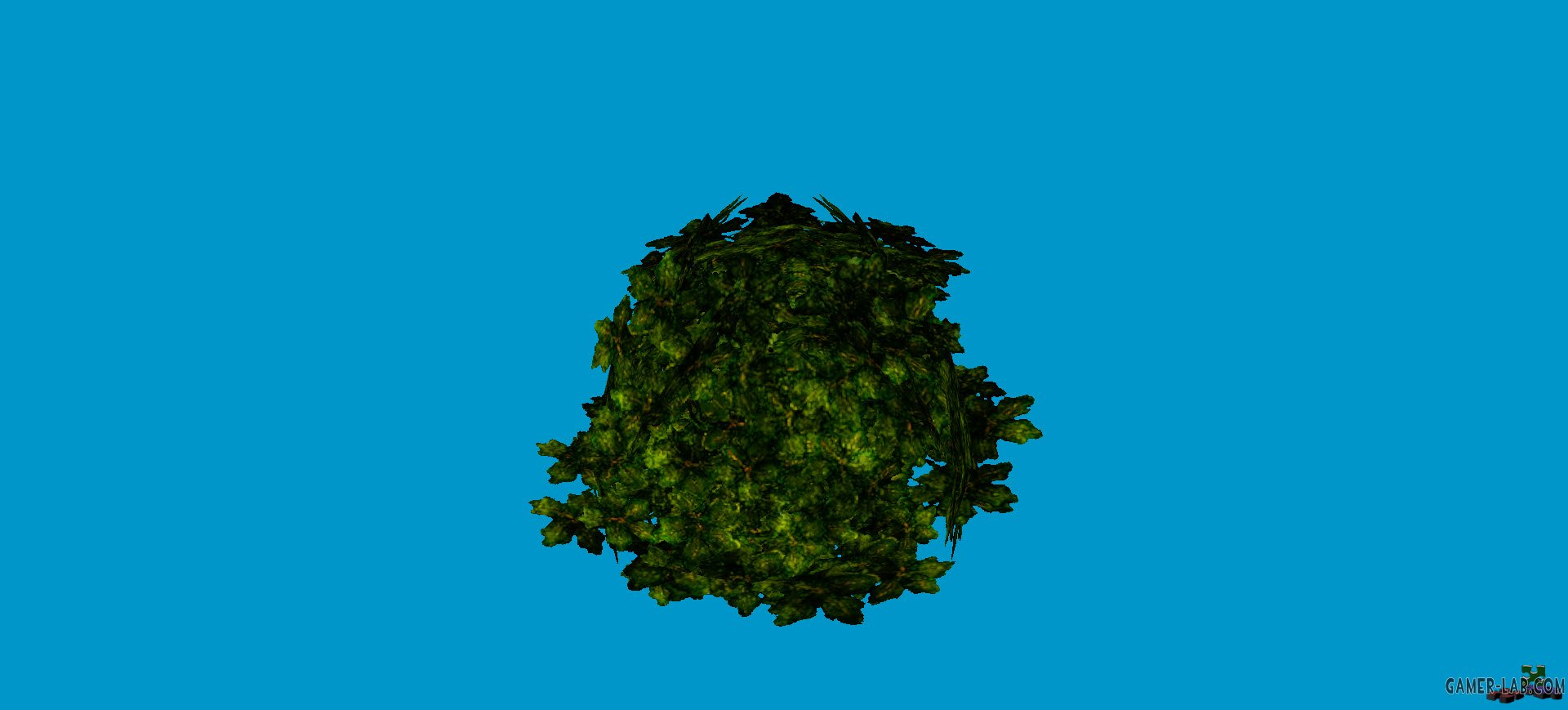 jn_sanicle_shrub_green