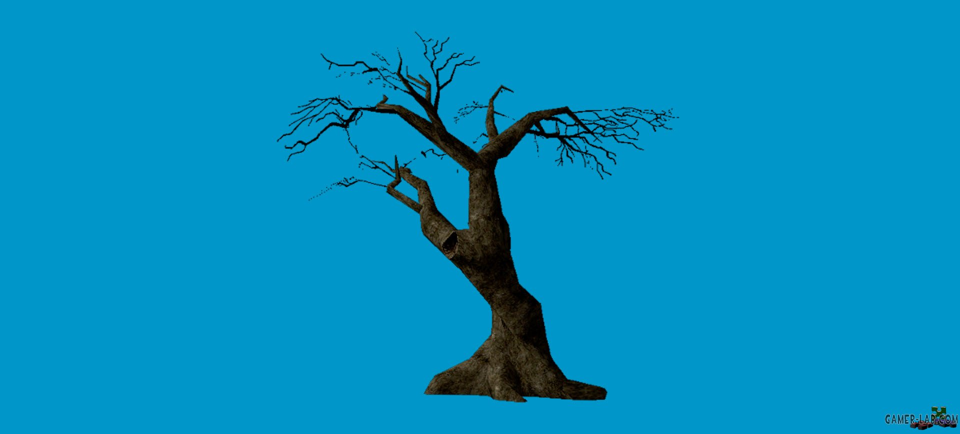 jn_twisttree_01_bb