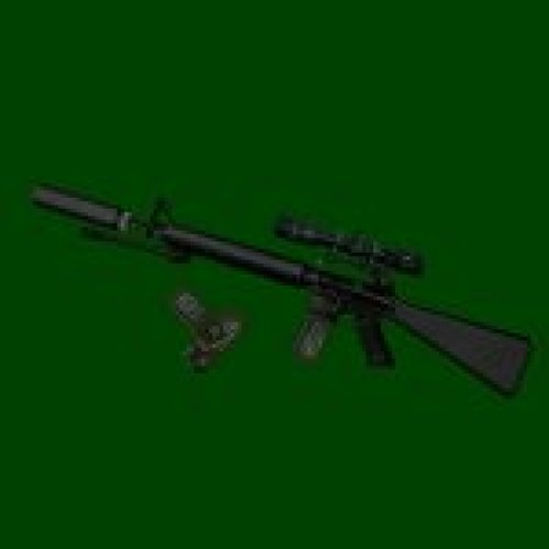 M16A2 scoped + silencer