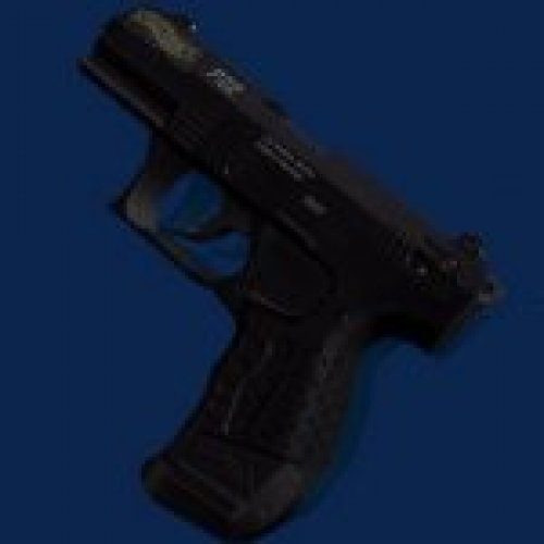 Walther P22 + compensated mod