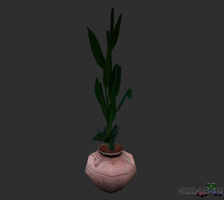 palmpot_small.mdl