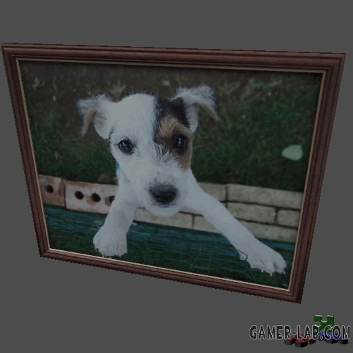 pictureframe04