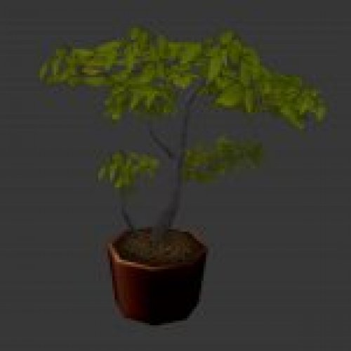 plant_potted.mdl