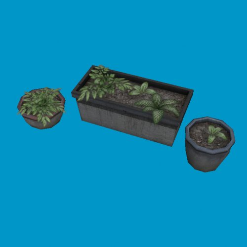 potted plants01