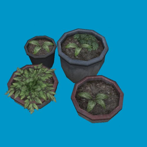 potted plants03