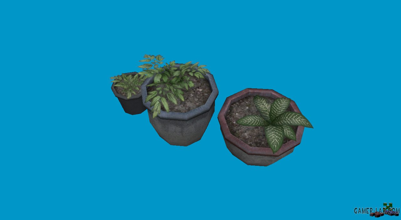 potted_plants07