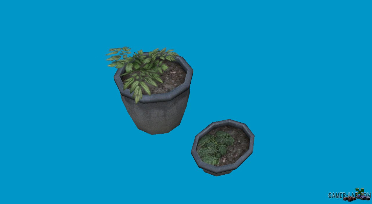 potted plants08