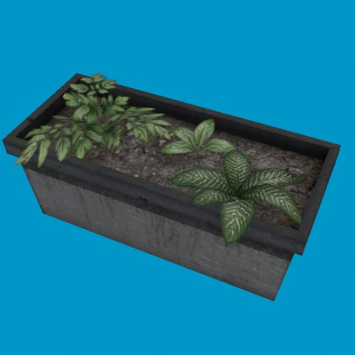 potted plants09