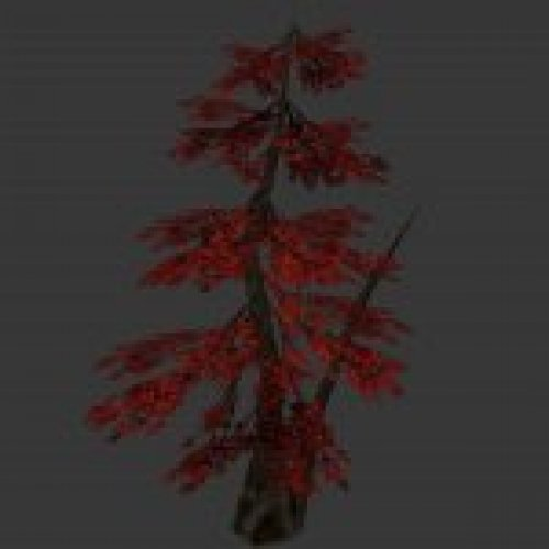 tree_japan_maple_red.mdl
