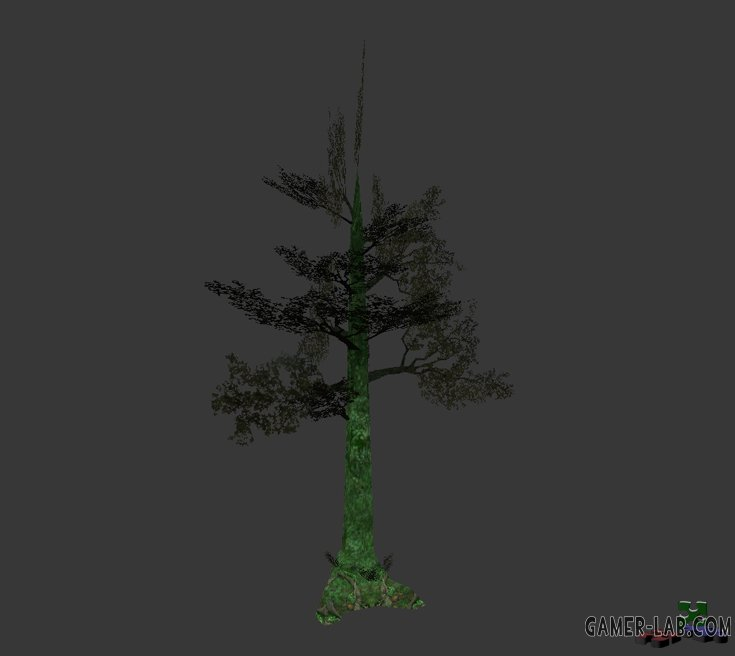 tree_jungle01.mdl