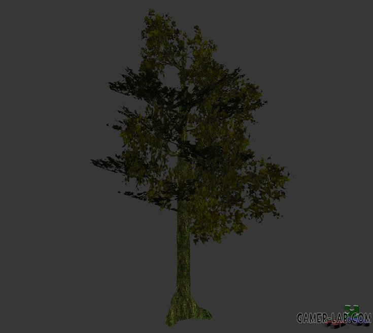tree_jungle_06.mdl