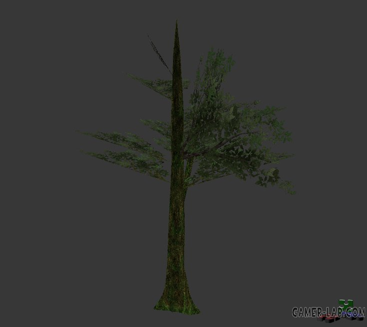 tree_jungle_07.mdl