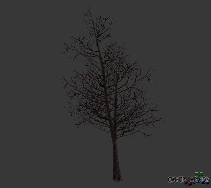 tree_noleaves.mdl