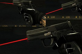 P228 with lasersight