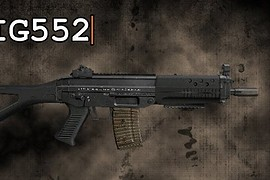 The SIG552