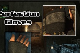 Perfection_Gloves