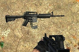 Anklors and CJ M4A1