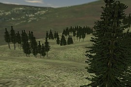 ts_woods_alpha6
