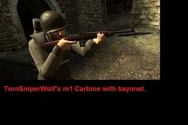 TSW_M1_Carbine_with_Bayonet